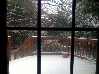 The view from WWP's window